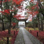 京都の紅葉で右京区の穴場を厳選!鹿王院・厭離庵・愛宕念仏寺