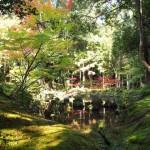 京都 女子旅のおすすめコース!癒しのスポット 苔寺で写経体験!
