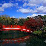 京都の紅葉で下京区と中京区の穴場を厳選!渉成園・神泉苑!