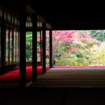 京都の紅葉で左京区の穴場を厳選⑥!霊鑑寺・天授庵・鷺森神社!