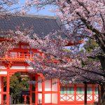 京都の桜 おすすめの穴場撮影スポット 東山区編② 豊国神社・豊国廟・新日吉神宮