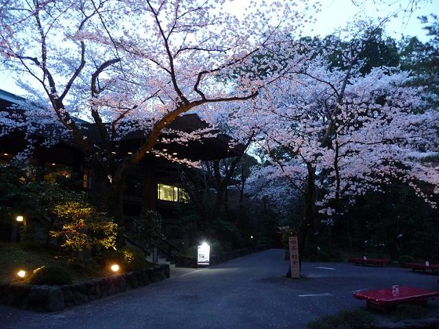 dliwashimizuhachimangu2