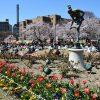 鶴舞公園の駐車場で安い料金は?周辺おすすめ地図ガイド&全リスト!
