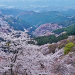 吉野の観光駐車場の料金や無料なのは?おすすめ地図ガイド&全リスト!